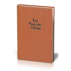 Bible Darby, grand format, brun clair - couverture rigide, skyvertex