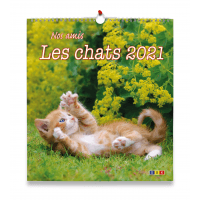 Nos amis les chats - Calendrier grand format